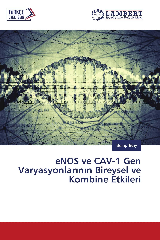 eNOS ve CAV-1 Gen Varyasyonlarının Bireysel ve Kombine Etkileri