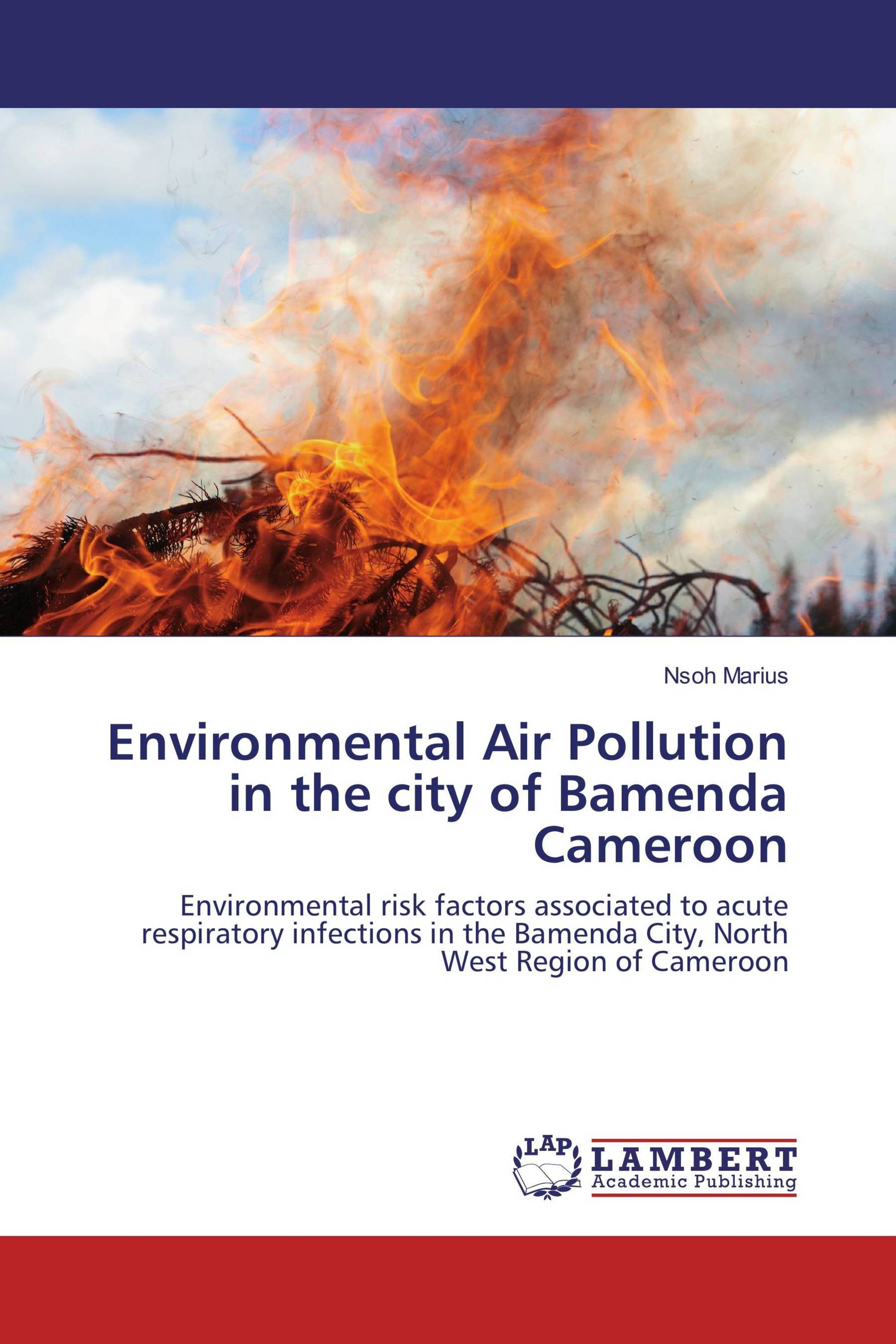 Environmental Air Pollution in the city of Bamenda Cameroon