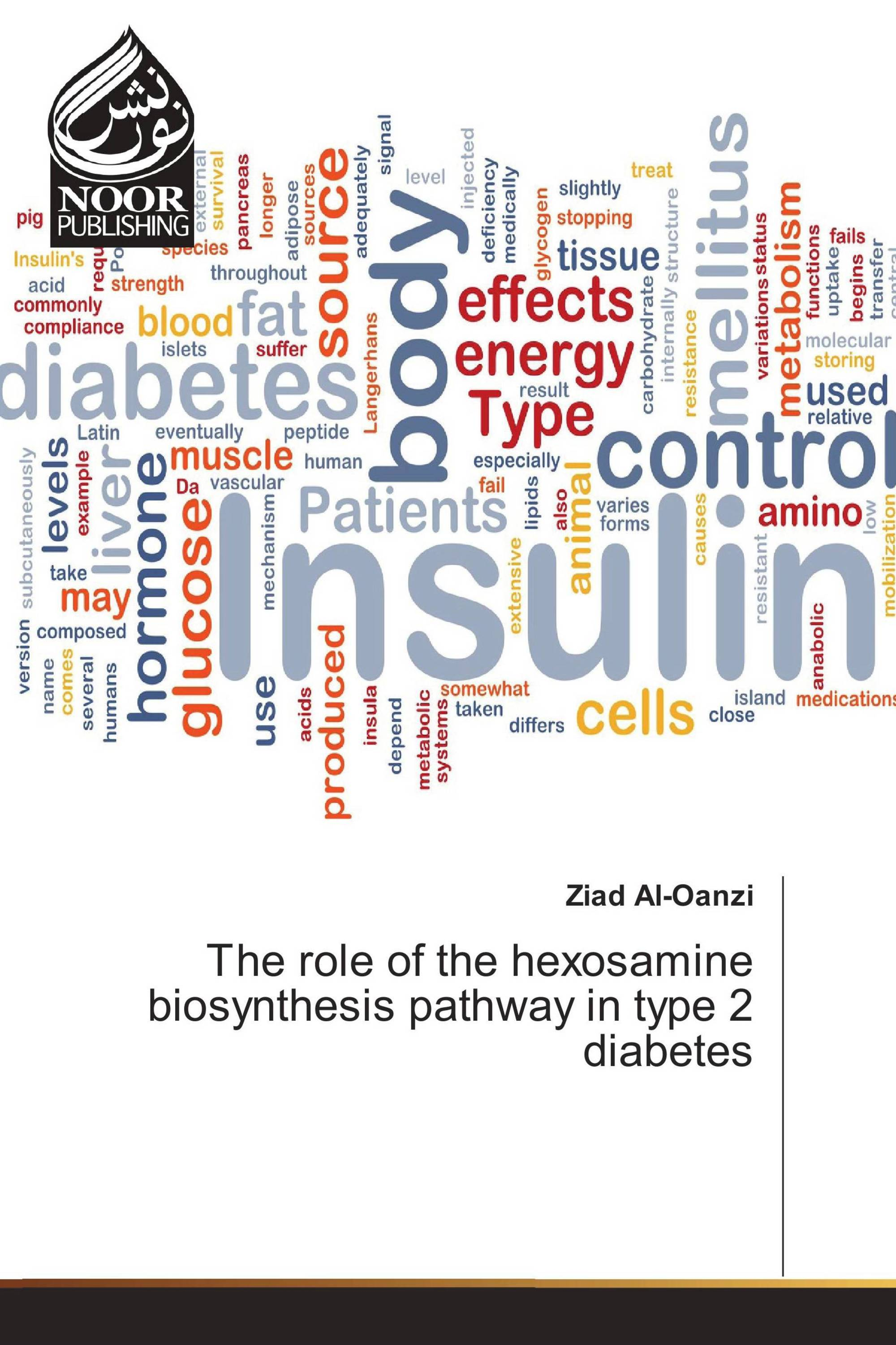 The role of the hexosamine biosynthesis pathway in type 2 diabetes