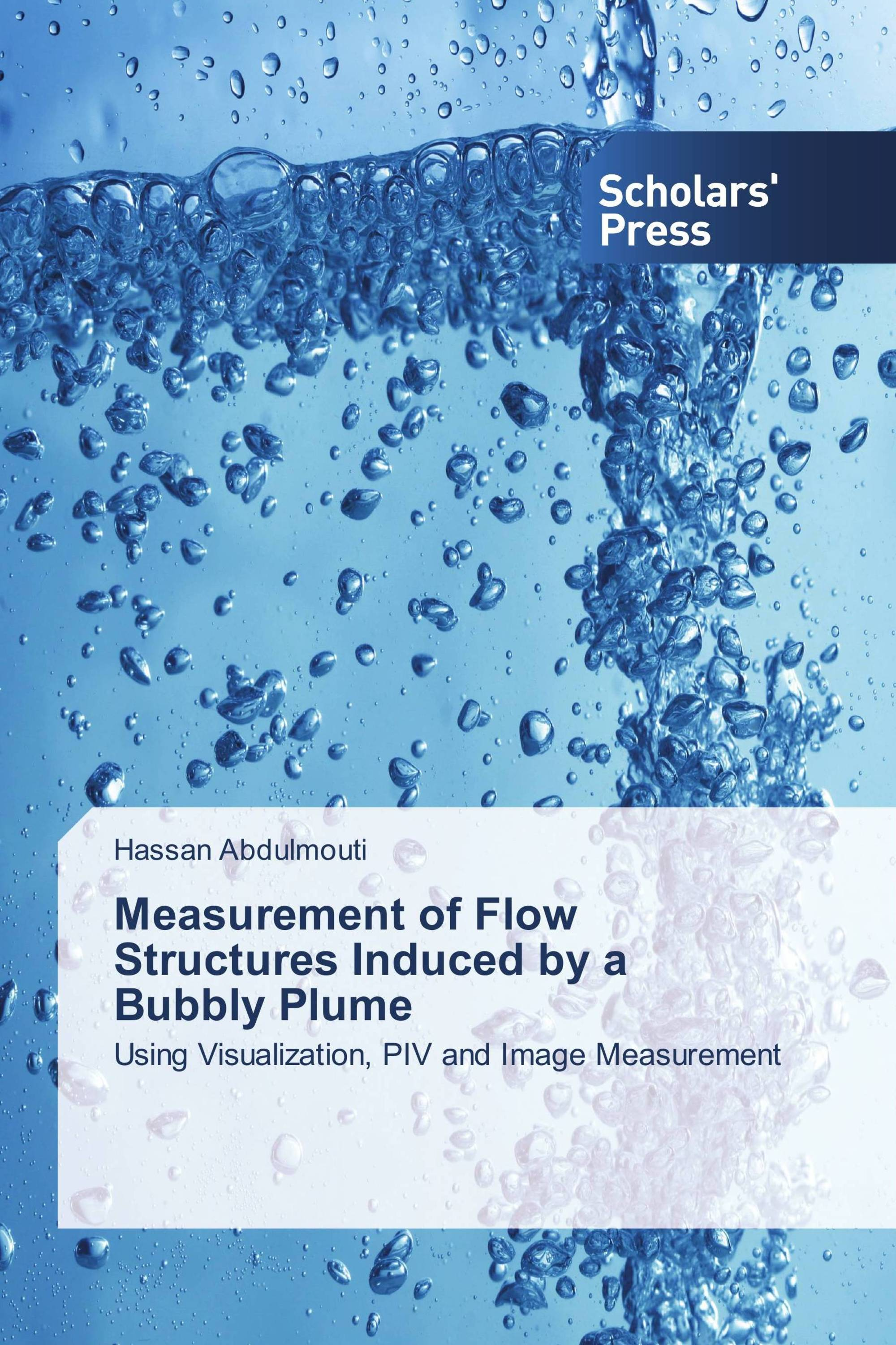 Measurement of Flow Structures Induced by a Bubbly Plume