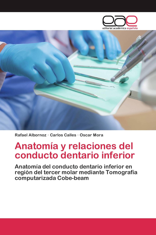 Anatomía y relaciones del conducto dentario inferior / 978-3-639 ...