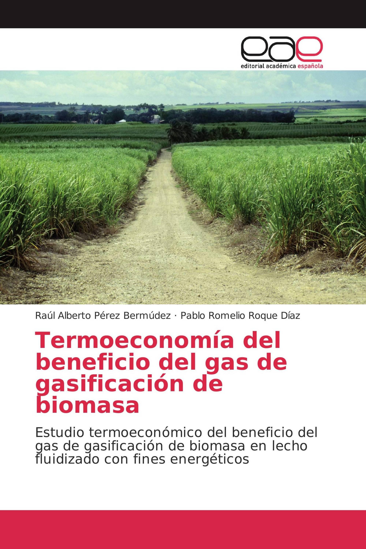 Termoeconomía del beneficio del gas de gasificación de biomasa