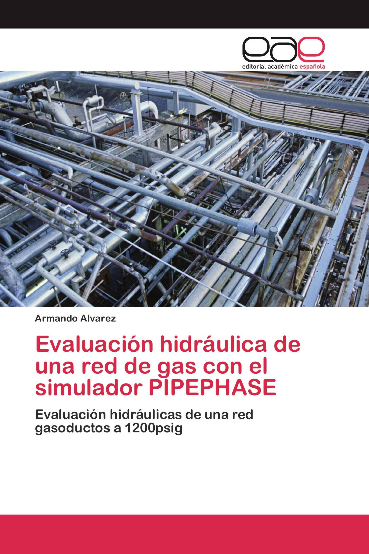 Evaluación hidráulica de una red de gas con el simulador PIPEPHASE