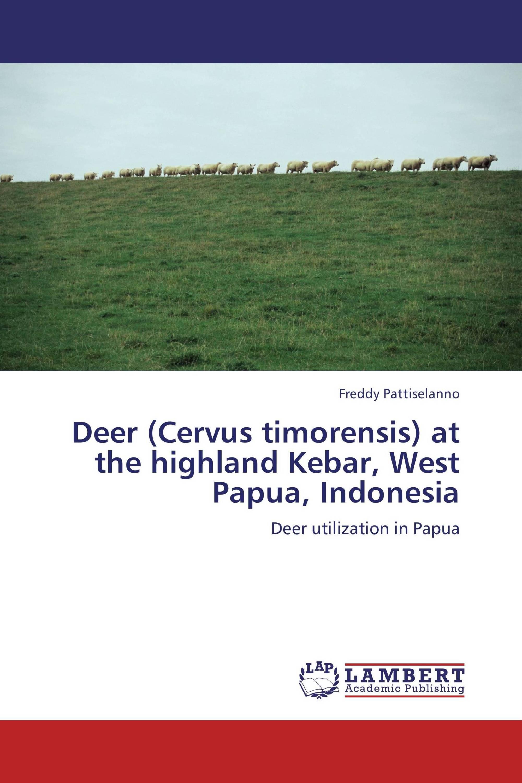 Deer (Cervus timorensis) at the highland Kebar, West Papua, Indonesia