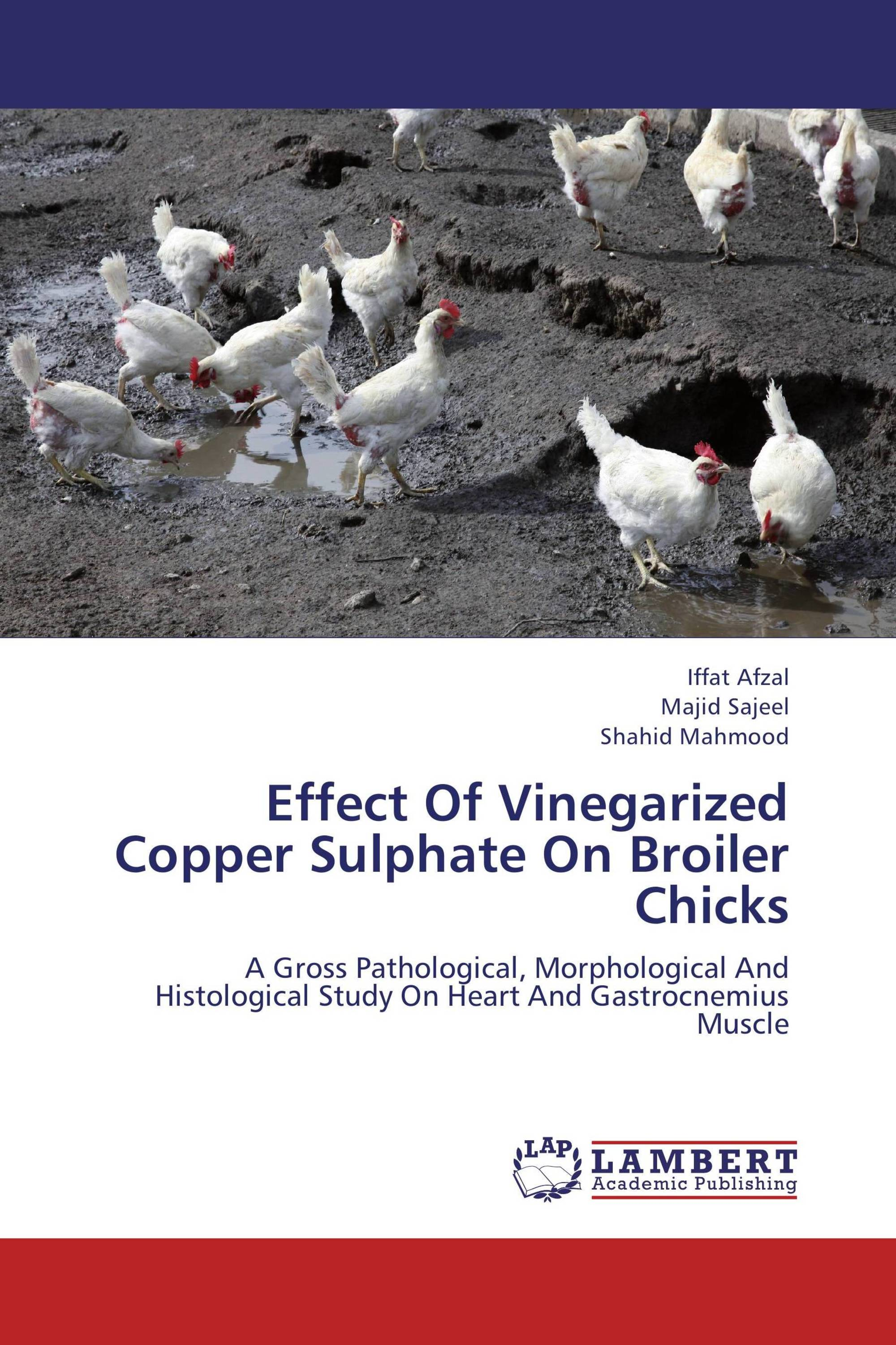 Effect Of Vinegarized Copper Sulphate On Broiler Chicks