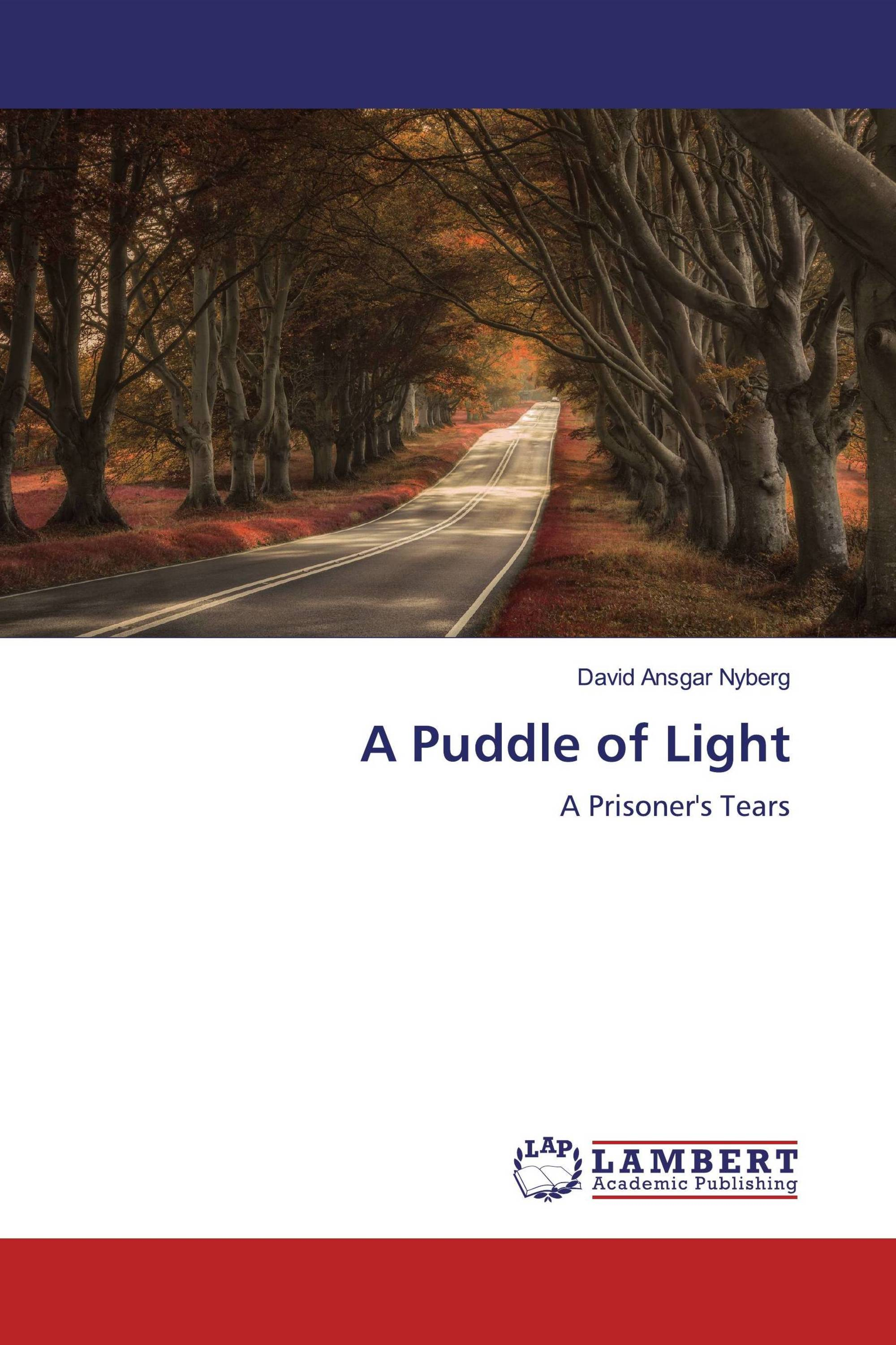 A Puddle of Light