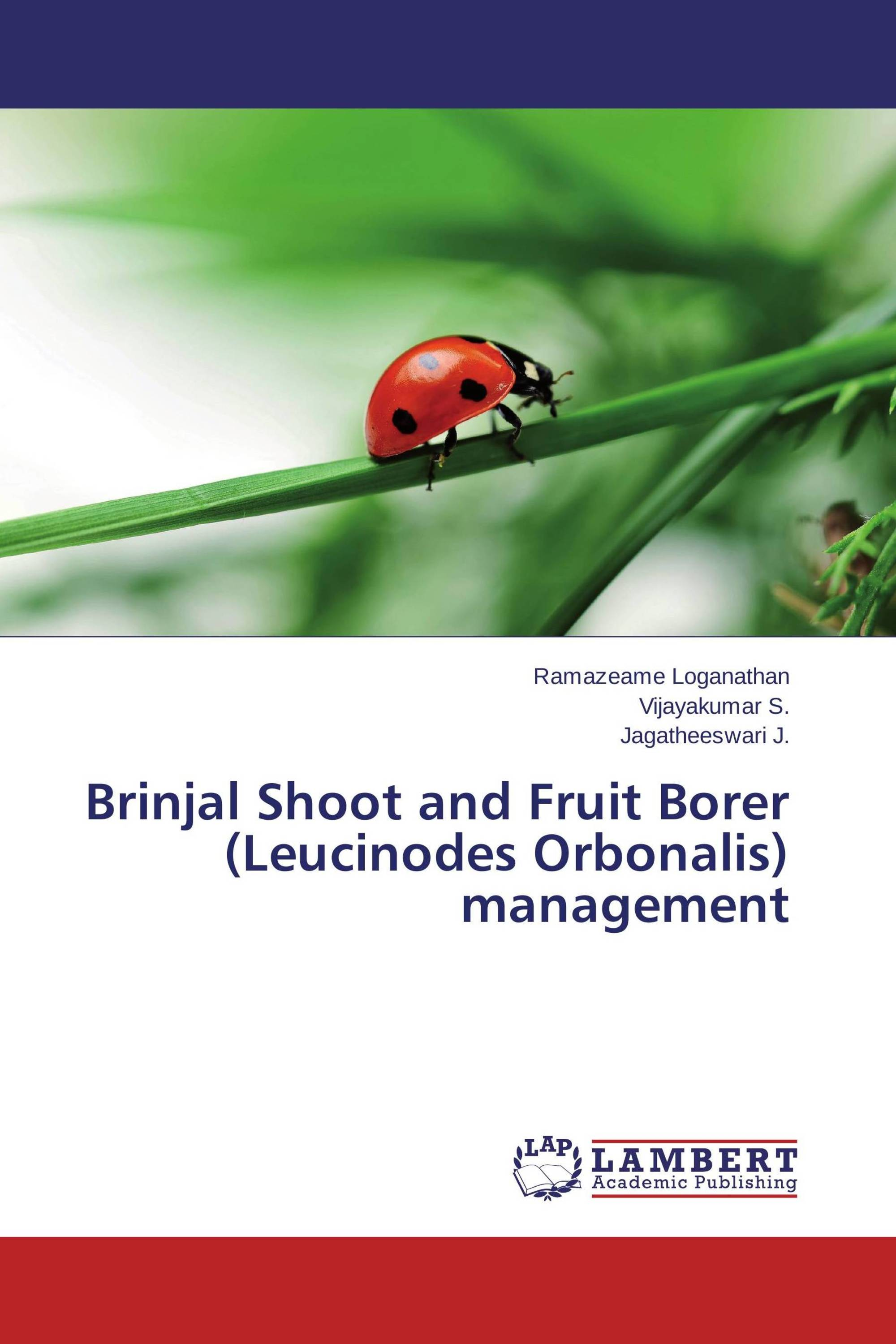 thesis on brinjal fruit and shoot borer Integrated nutrient management (inm) approach for brinjal  and other solanaceous vegetables -a review  incidence of brinjal shoot and fruit borer.