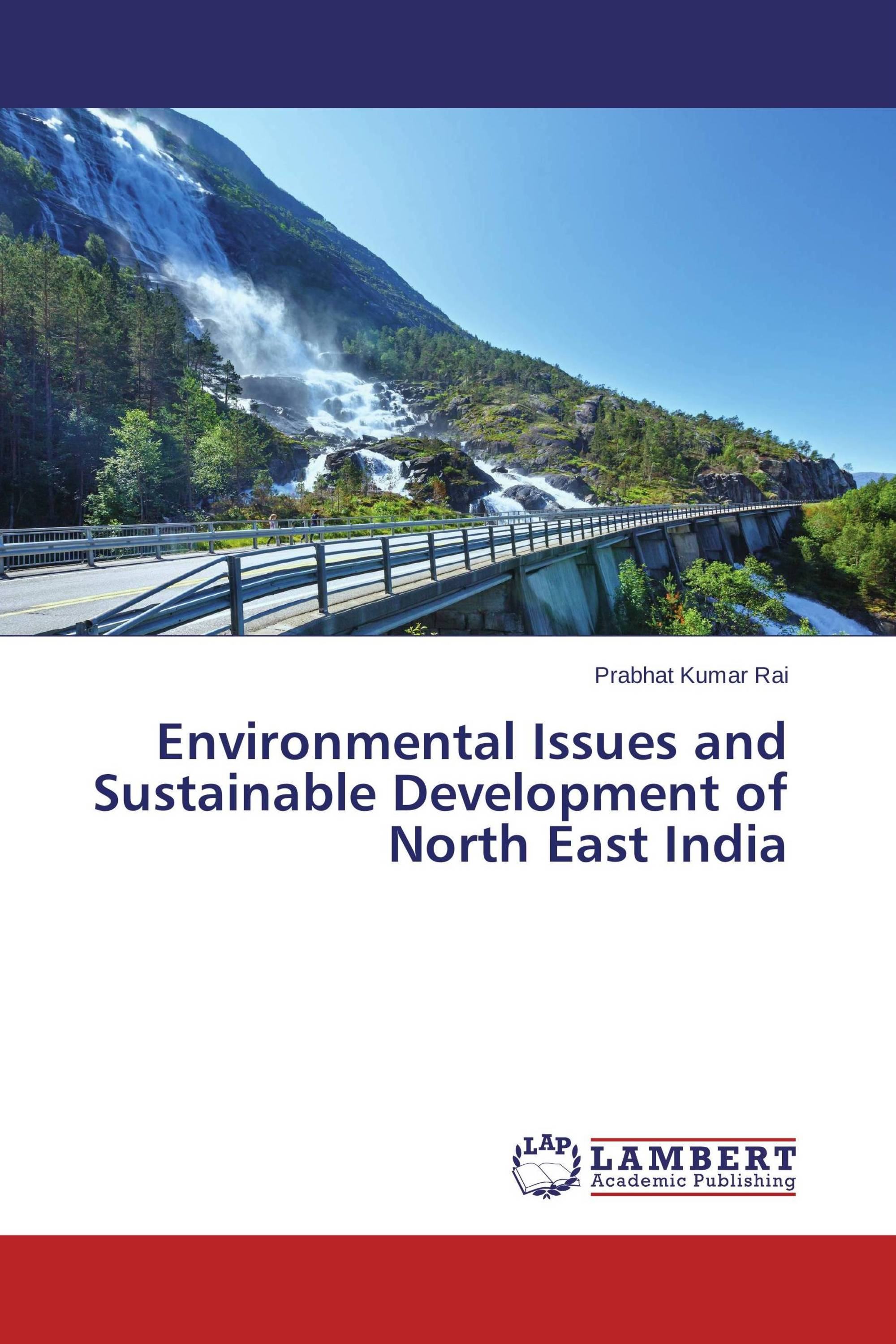 environmental issues and infastructure essay