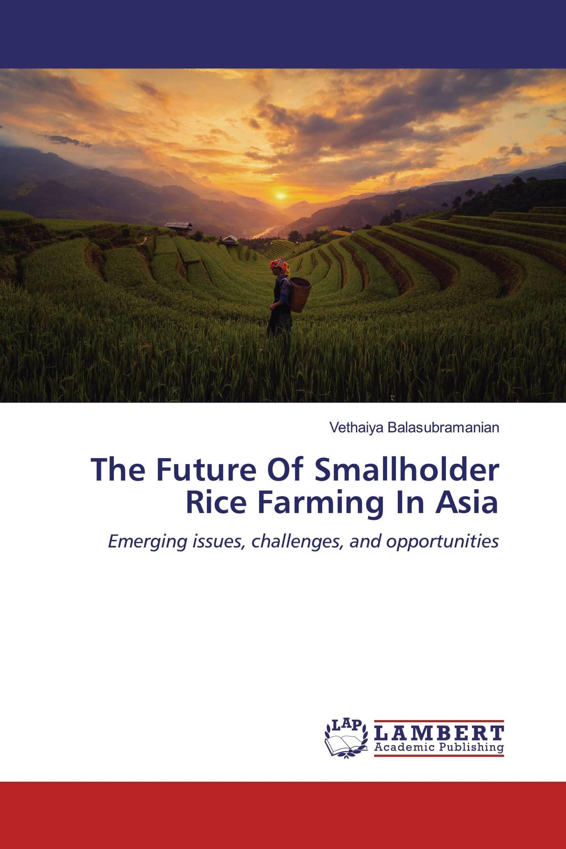 The Future Of Smallholder Rice Farming In Asia