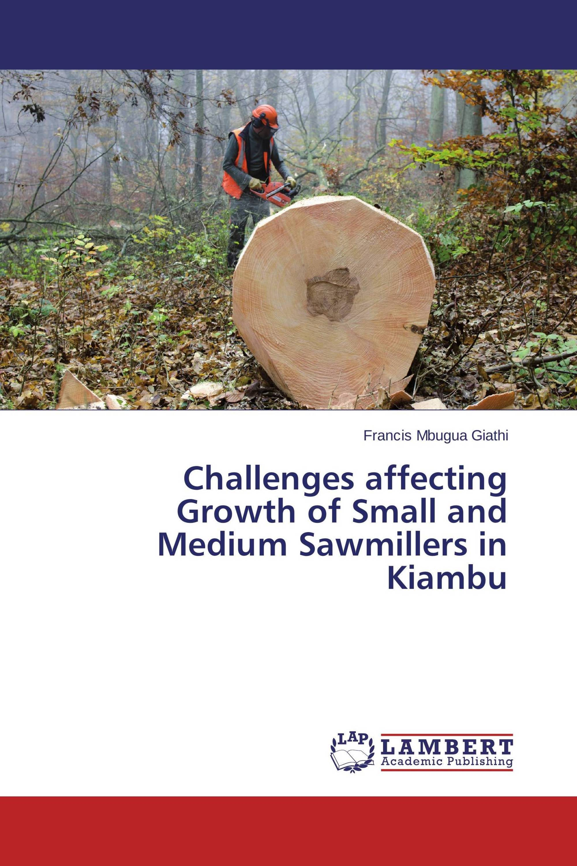 factors affecting growth of small scale enterprise The factors that will affect the business form chosen are: easy of formation exposure to financial risk overall view of our small scale enterprises are that most of our small scale enterprises are build up by the sole proprietorship and some of them build by the partnership.