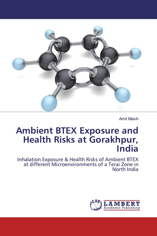 Ambient BTEX Exposure and Health Risks at Gorakhpur, India