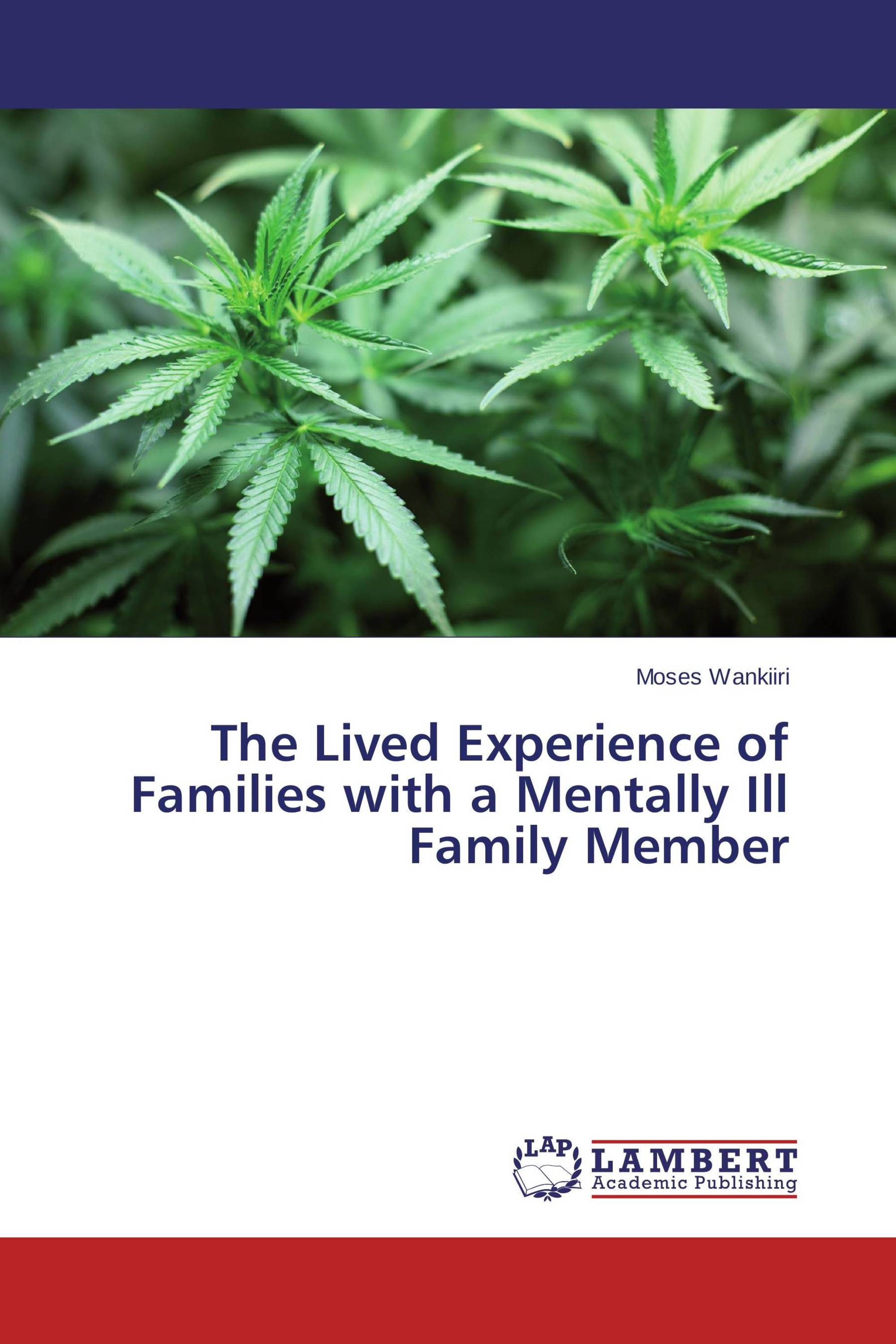 The Lived Experience of Families with a Mentally Ill Family Member