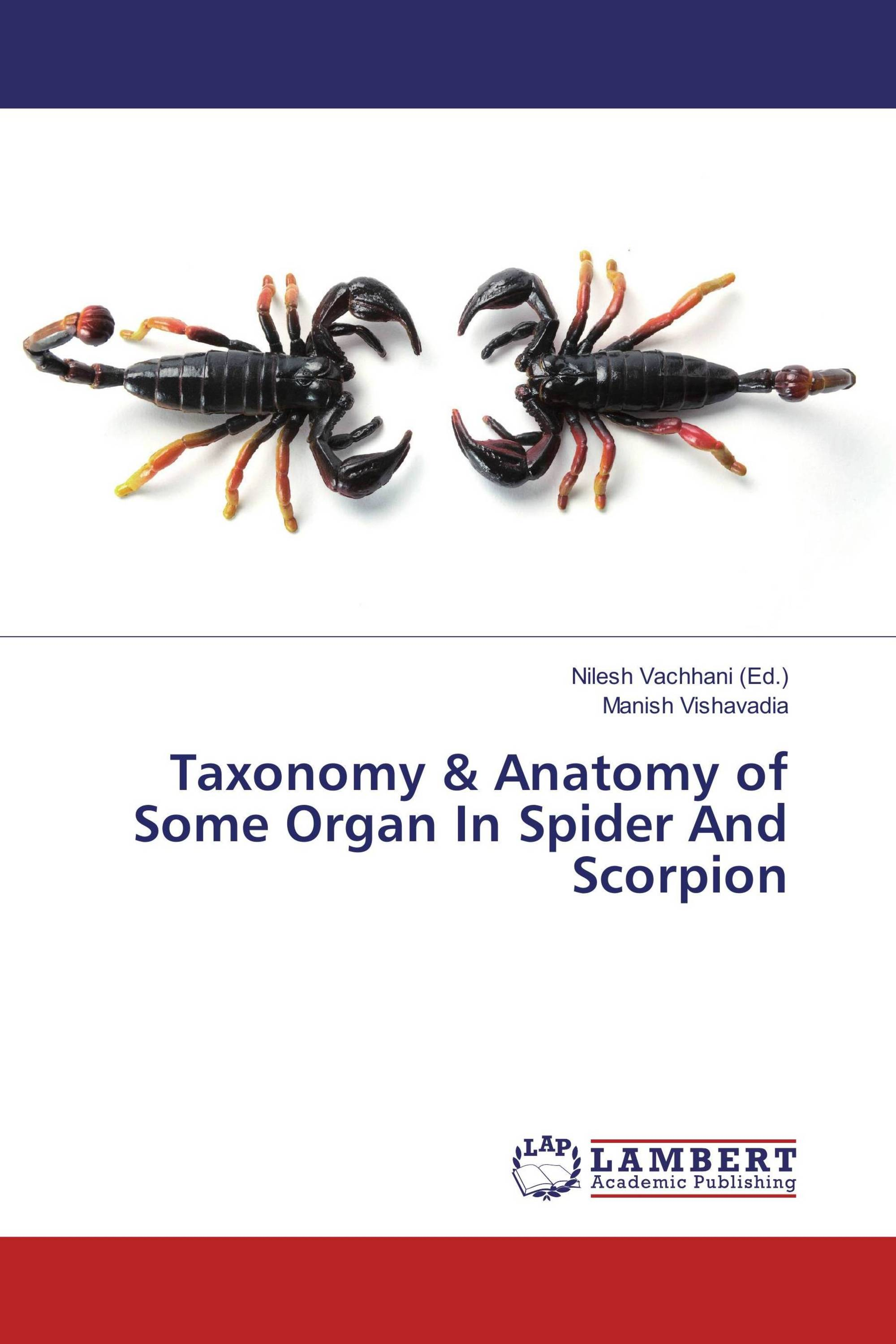 Taxonomy & Anatomy of Some Organ In Spider And Scorpion / 978-3-659 ...