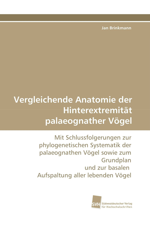 Erfreut Vergleichende Anatomie Beweise Für Die Evolution Galerie ...