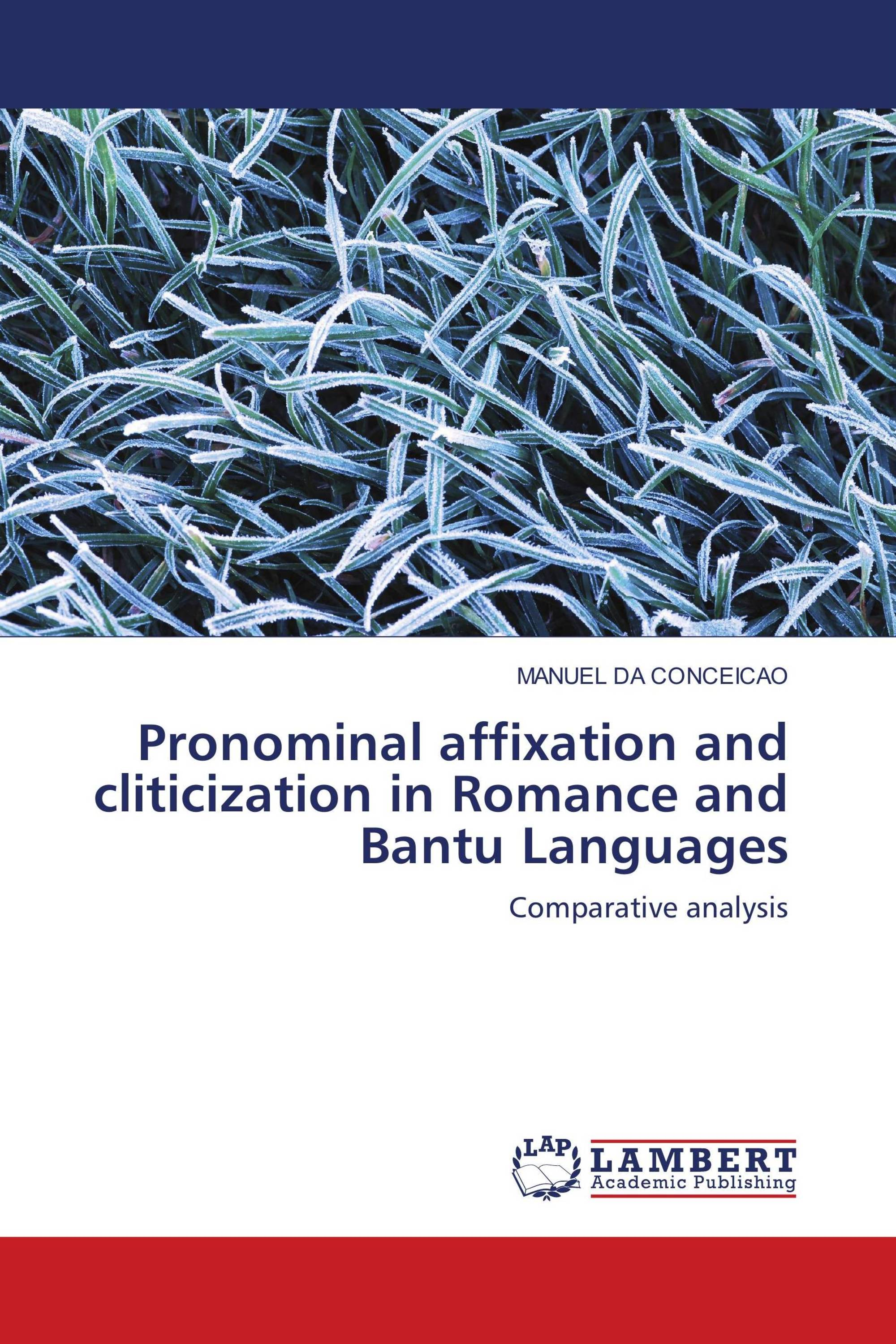Pronominal affixation and cliticization in Romance and Bantu Languages