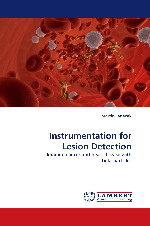 Instrumentation for Lesion Detection