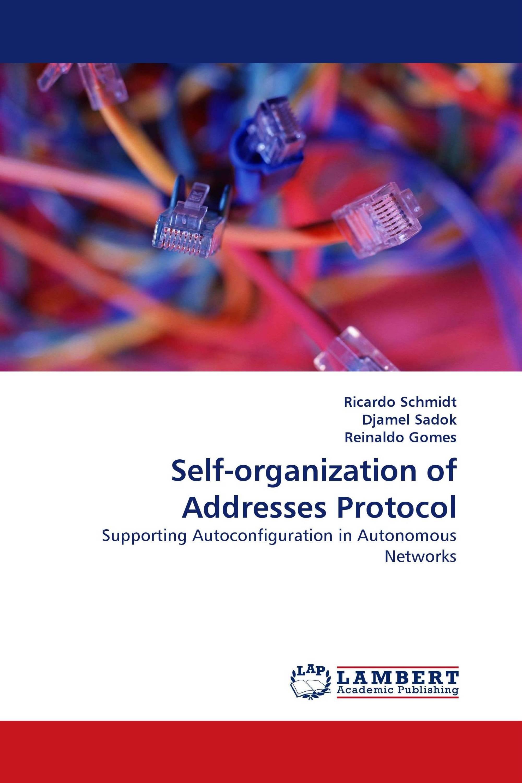 Self-organization of Addresses Protocol
