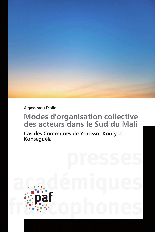 Modes d'organisation collective des acteurs dans le Sud du Mali