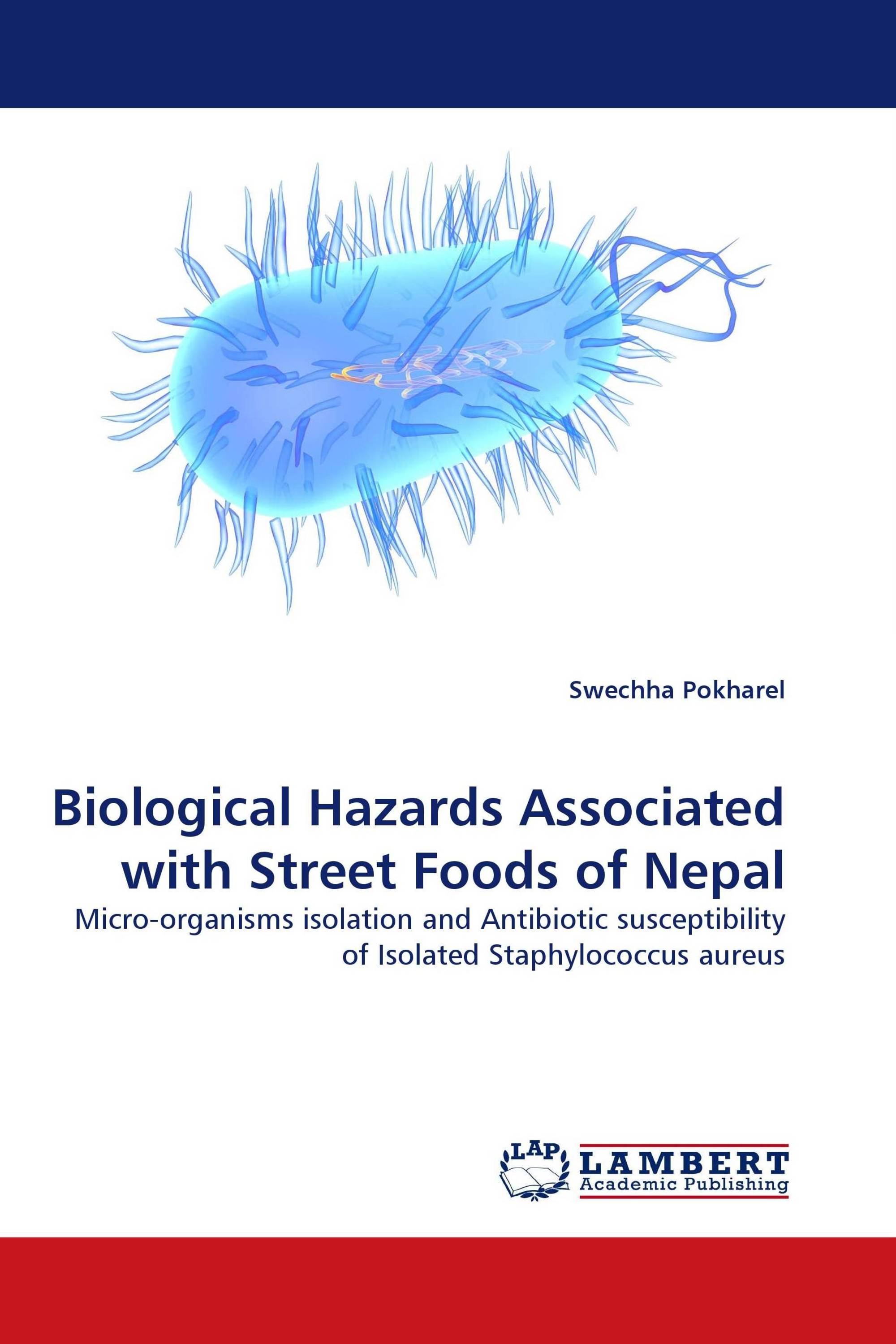 thesis about street foods