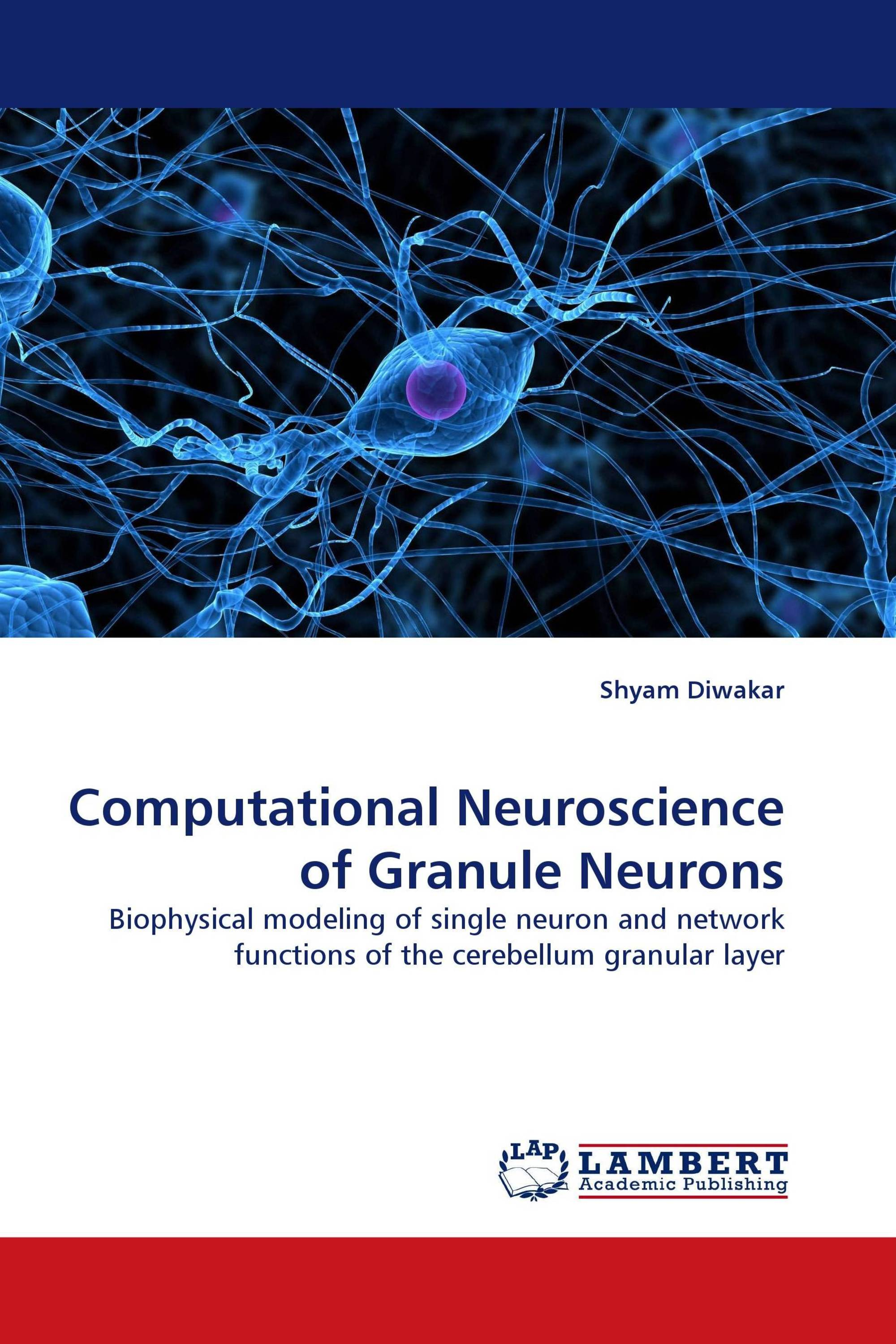 Computational Neuroscience of Granule Neurons