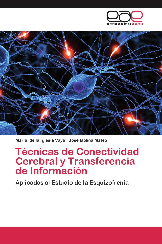 Técnicas de Conectividad Cerebral y Transferencia de Información