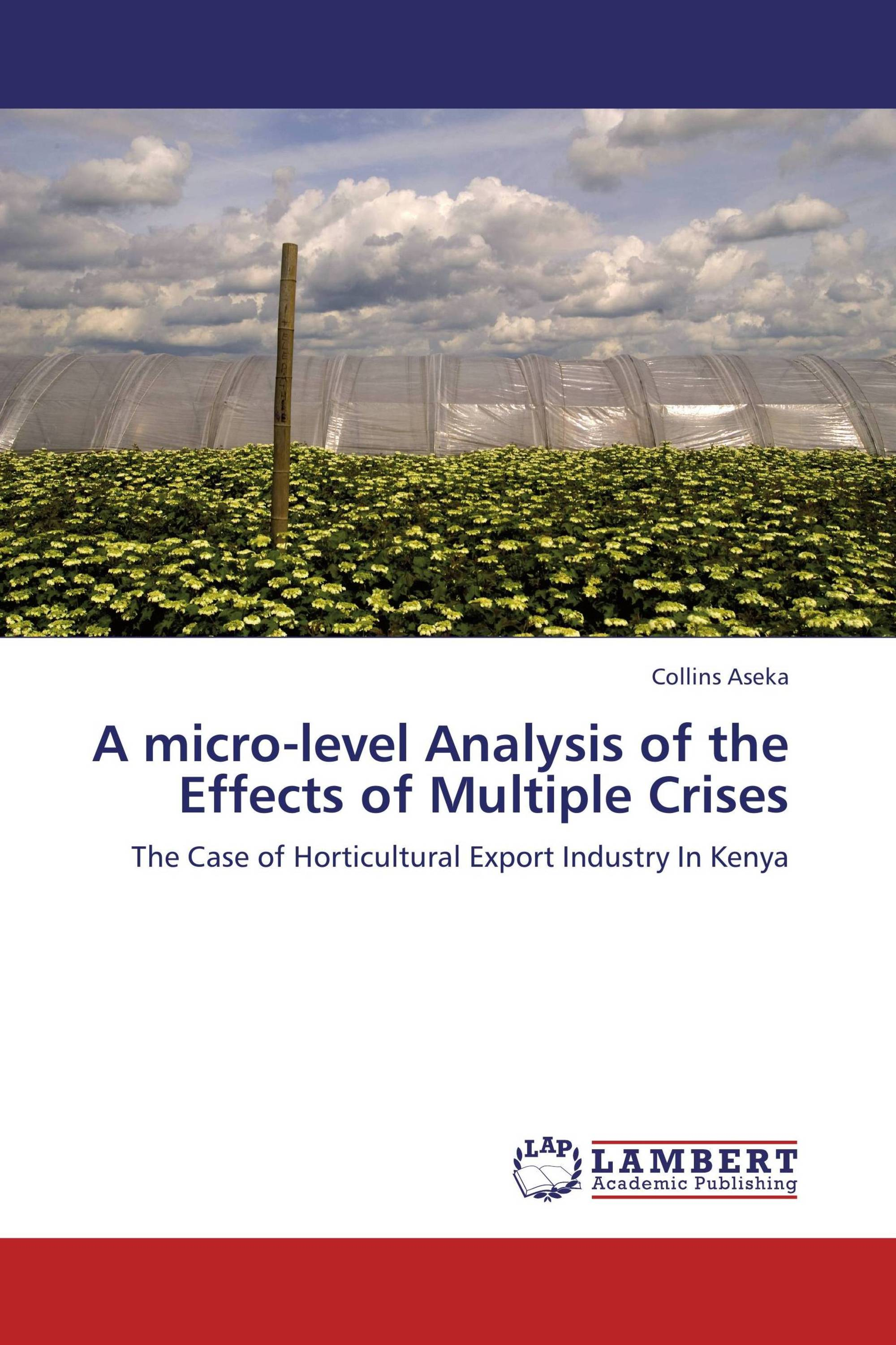 micro analysis of