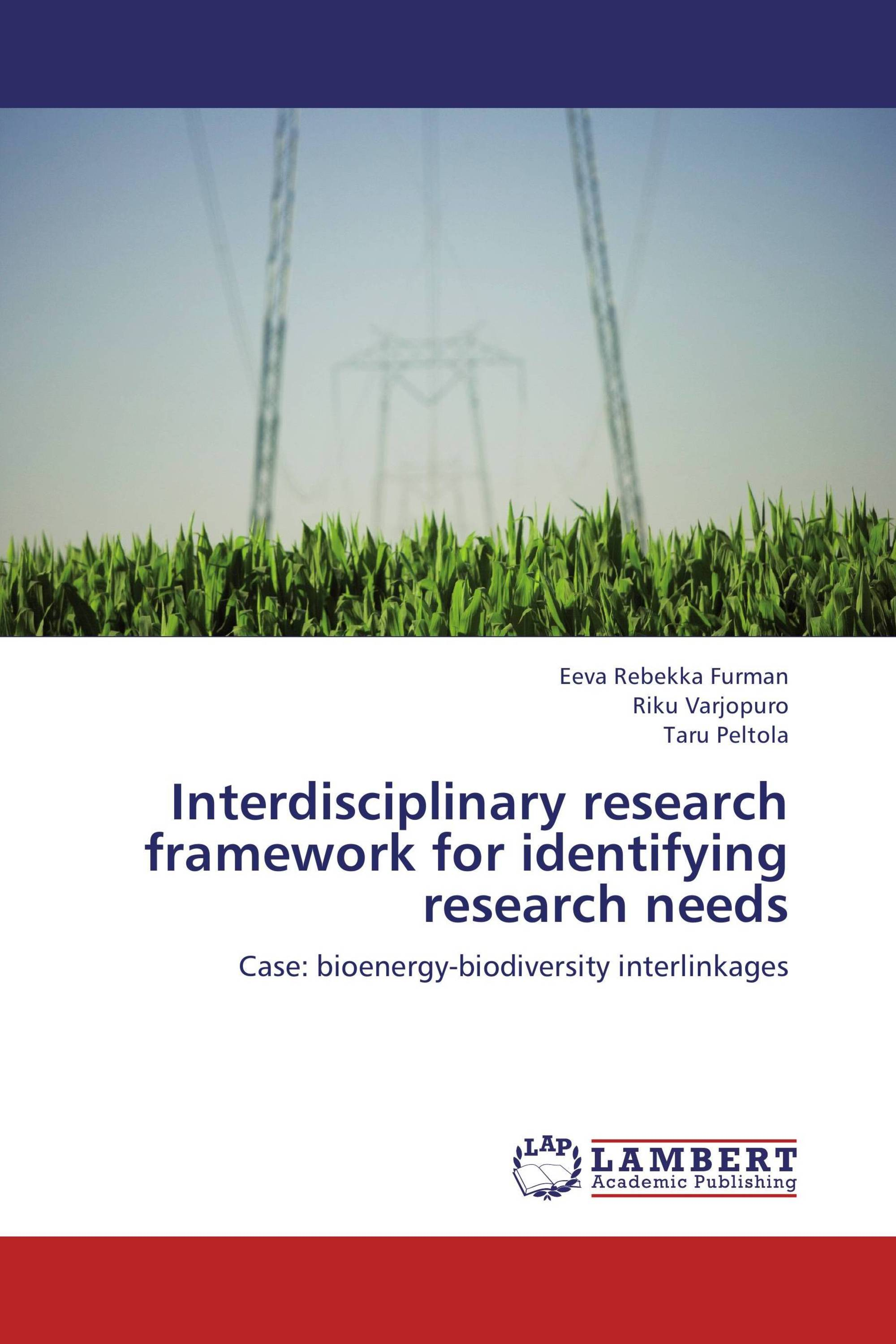 Interdisciplinary research framework for identifying research needs