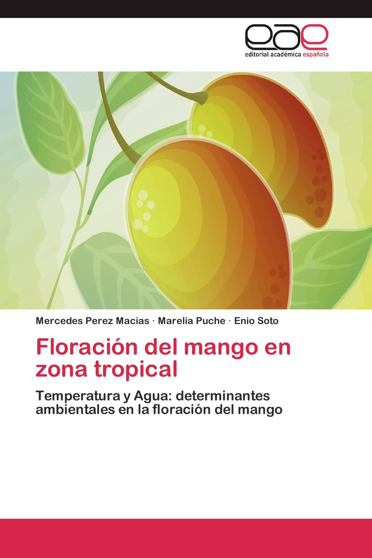 Floración del mango en zona tropical