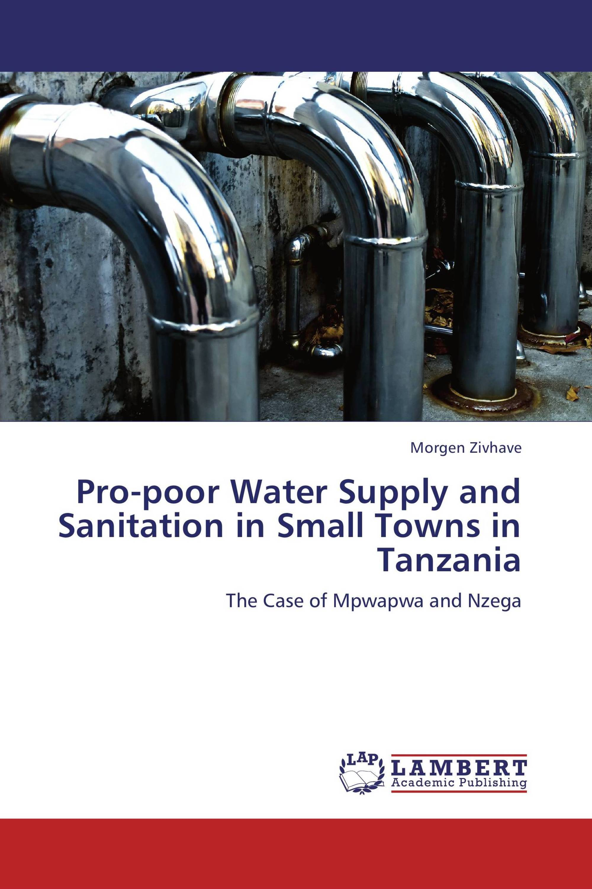 Pro-poor Water Supply and Sanitation in Small Towns in Tanzania