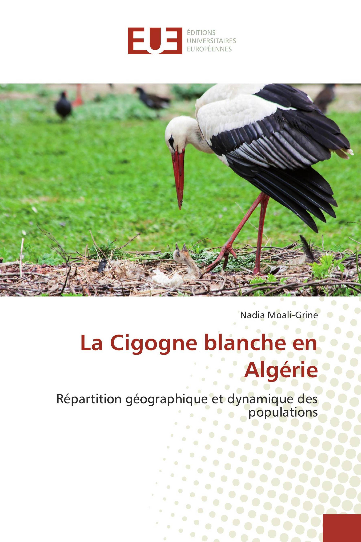 La Cigogne blanche en Algérie