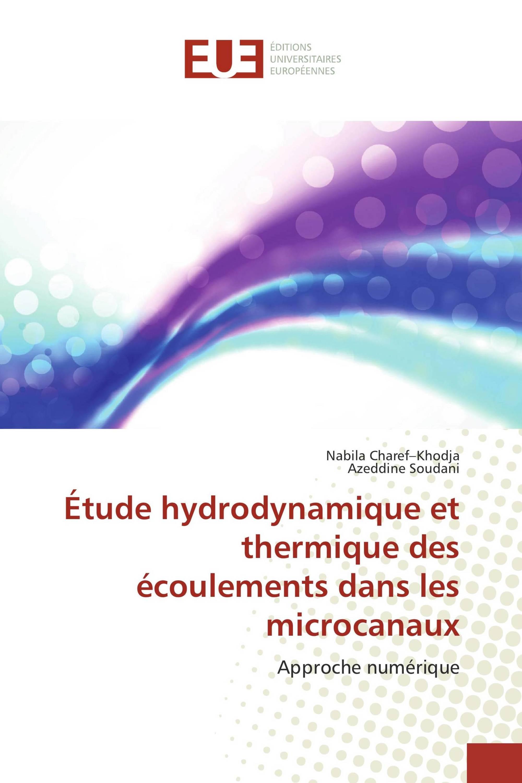 Étude hydrodynamique et thermique des écoulements dans les microcanaux