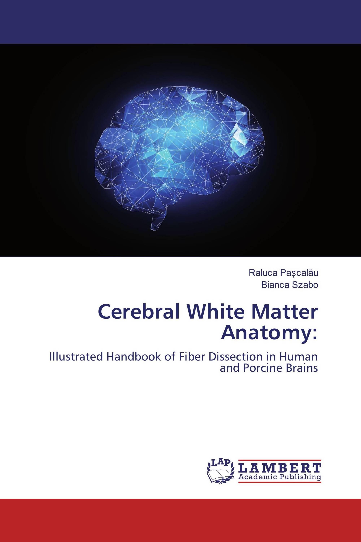 Cerebral White Matter Anatomy: / 978-613-4-90176-5 / 9786134901765 ...