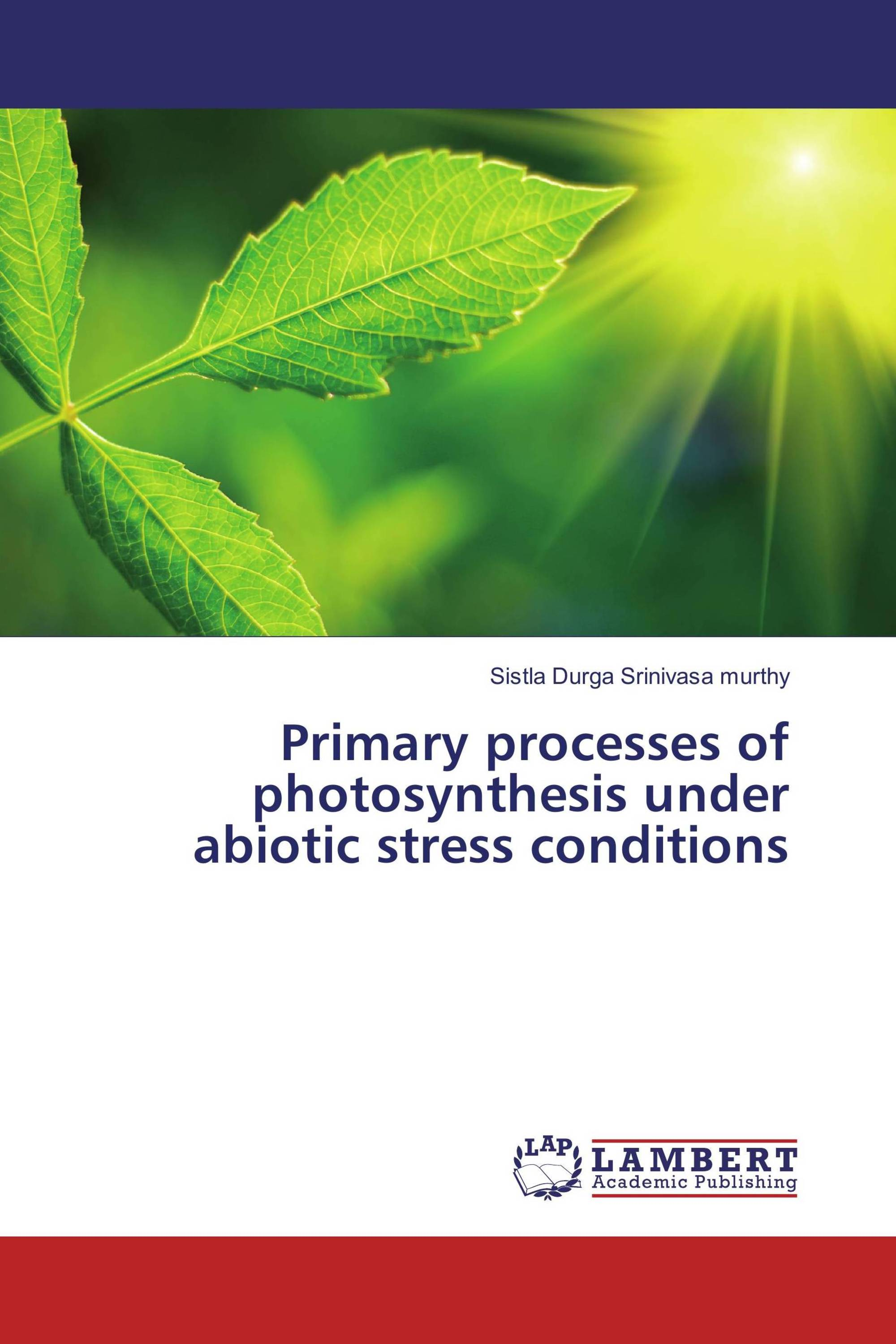 Primary processes of photosynthesis under abiotic stress conditions