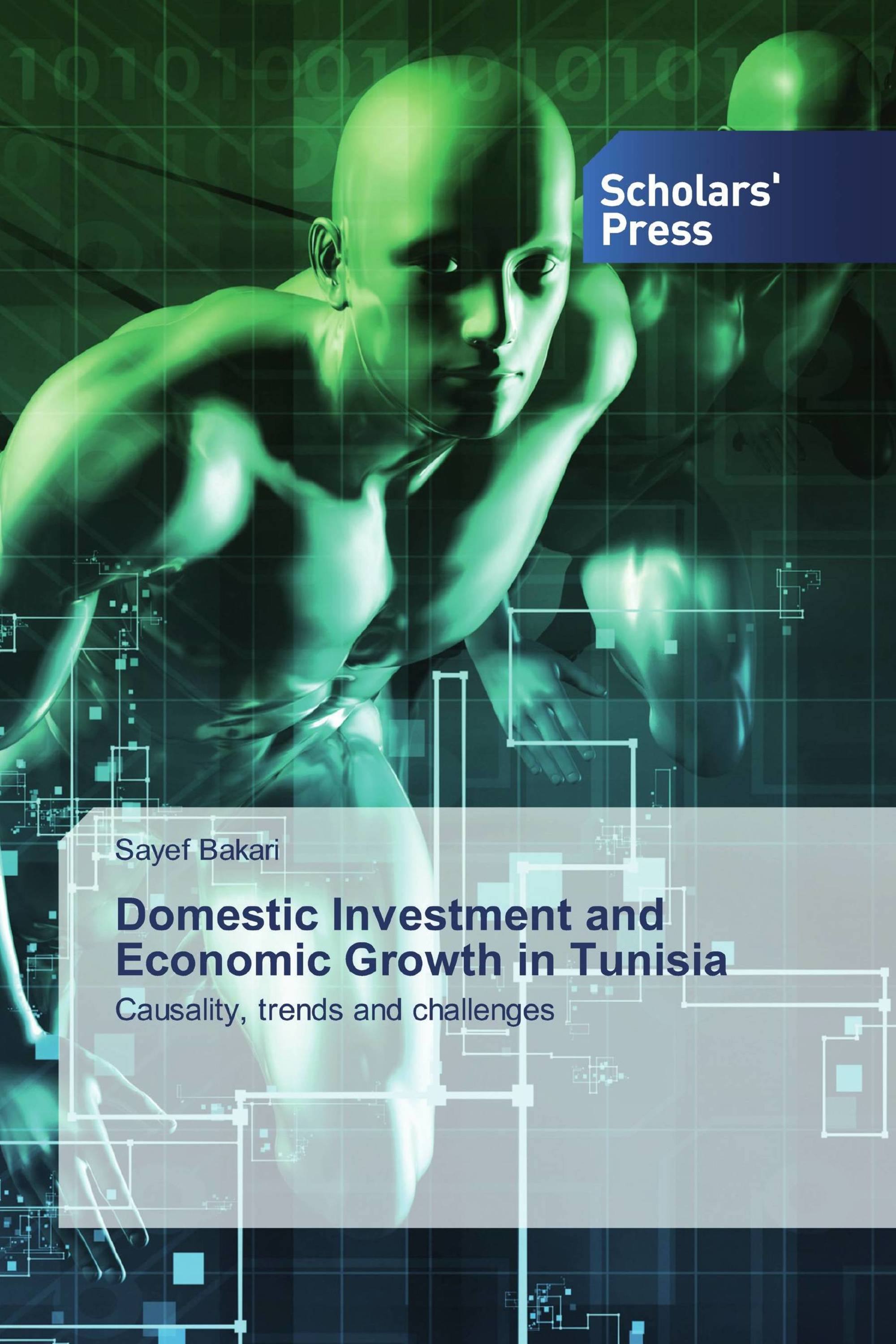 Domestic Investment and Economic Growth in Tunisia