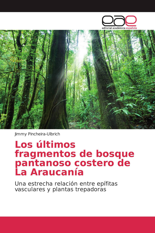 Los últimos fragmentos de bosque pantanoso costero de La Araucanía