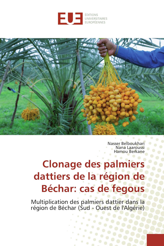 Clonage des palmiers dattiers de la région de Béchar: cas de fegous