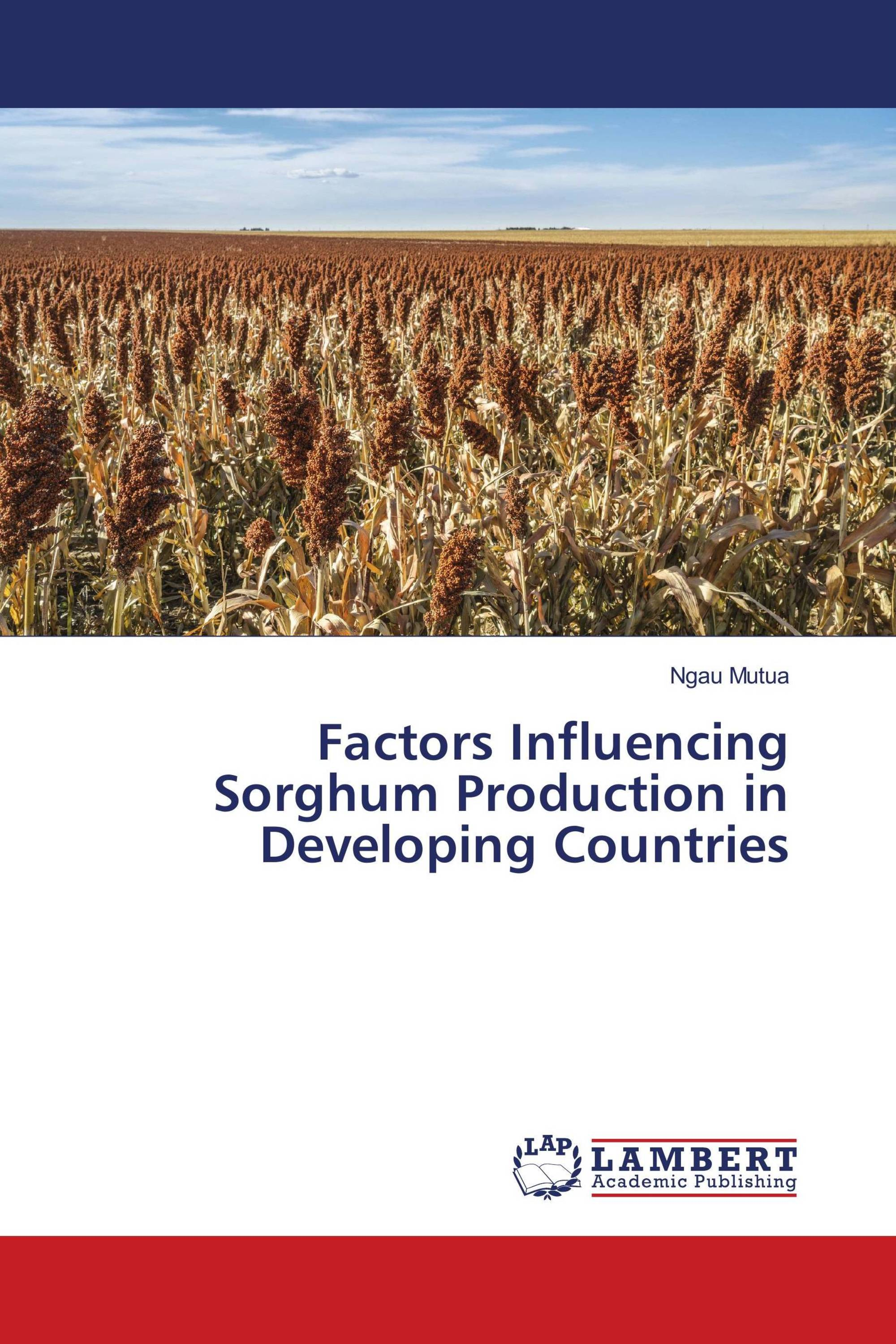 Factors Influencing Sorghum Production in Developing Countries