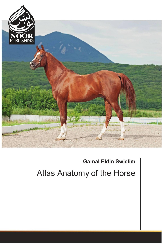 Atlas Anatomy of the Horse