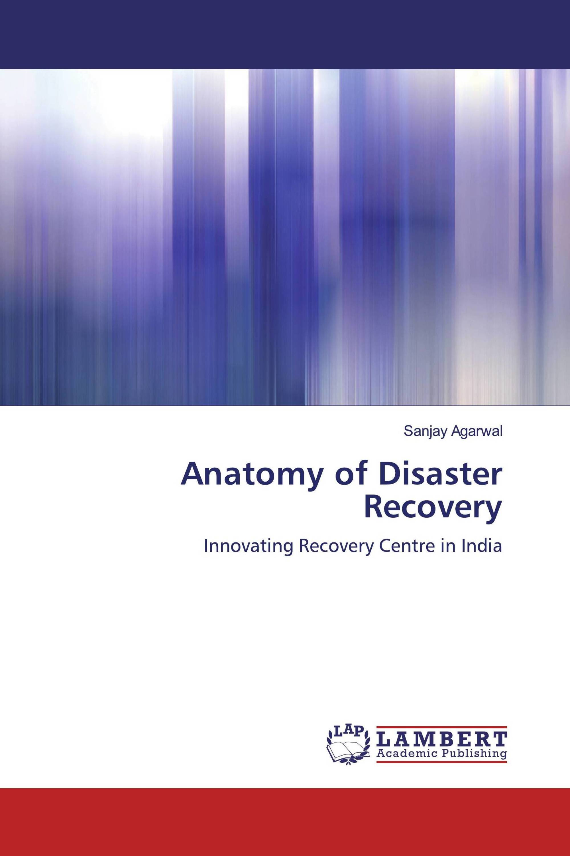 Anatomy of Disaster Recovery