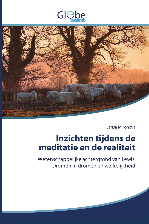 Inzichten tijdens de meditatie en de realiteit