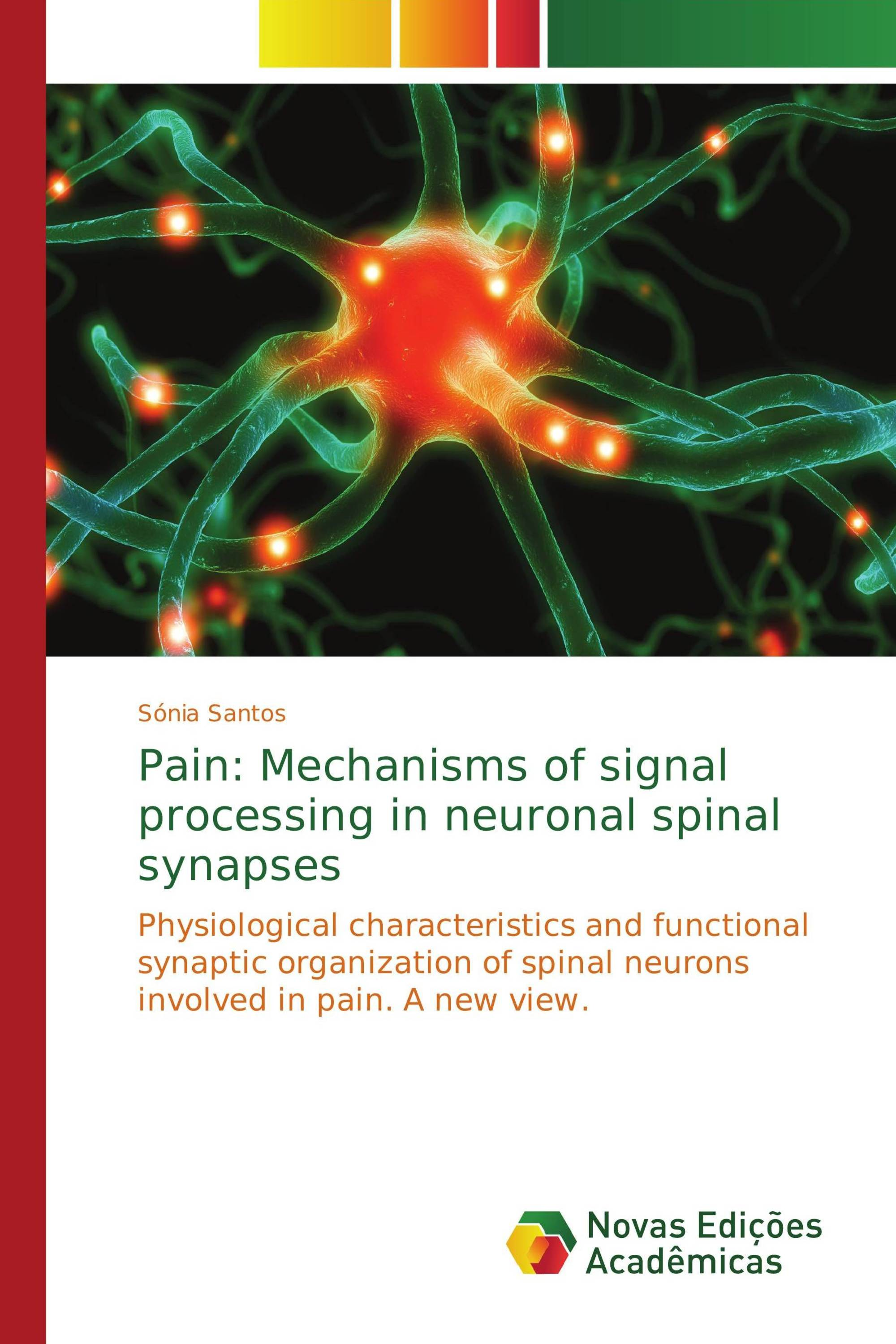 Pain Mechanisms Of Signal Processing In Neuronal Spinal Synapses