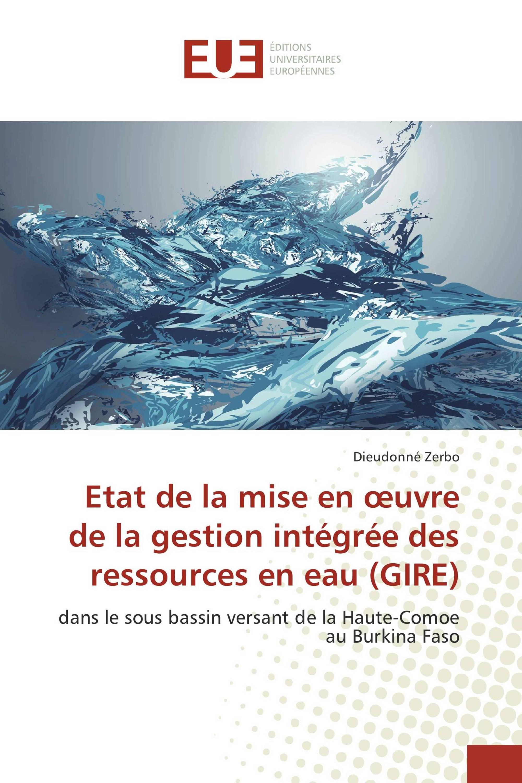 Etat de la mise en œuvre de la gestion intégrée des ressources en eau (GIRE)