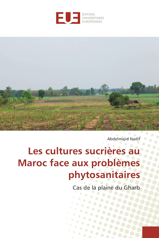 Les cultures sucrières au Maroc face aux problèmes phytosanitaires