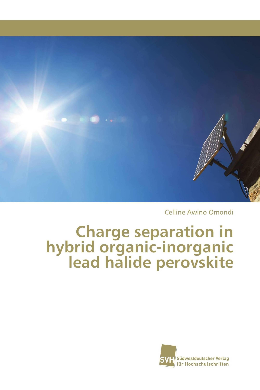 Charge separation in hybrid organic-inorganic lead halide perovskite