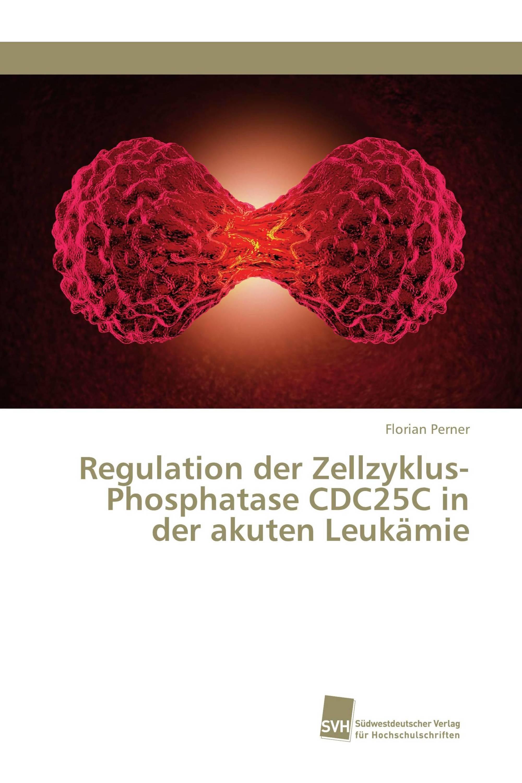 Regulation der Zellzyklus-Phosphatase CDC25C in der akuten Leukämie