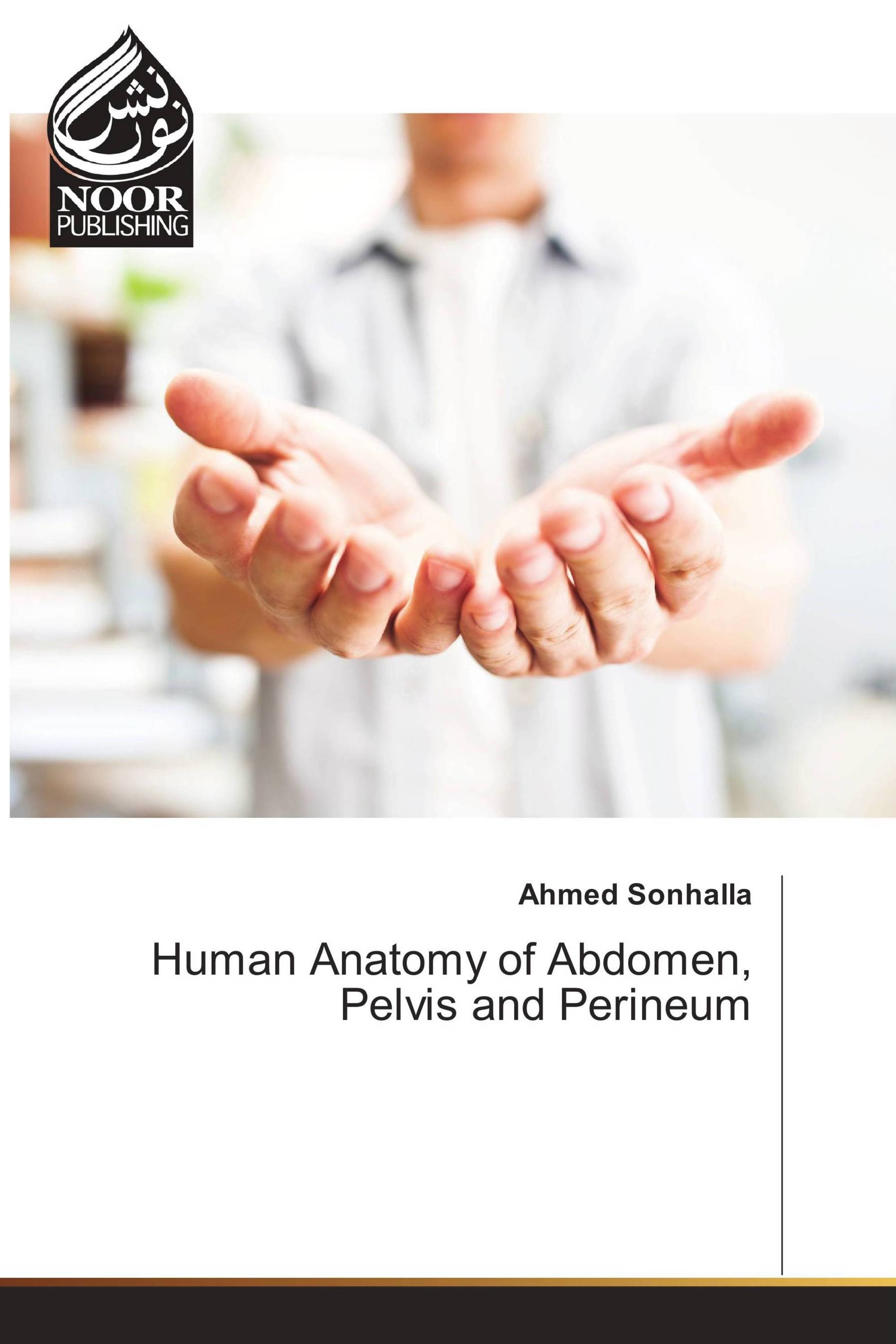 Human Anatomy Of Abdomen Pelvis And Perineum 978 620 2 34378 7