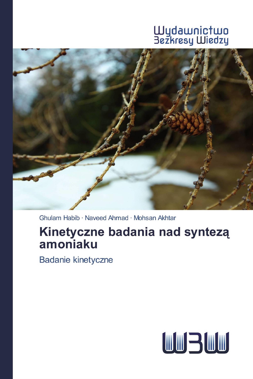 Kinetyczne badania nad syntezą amoniaku