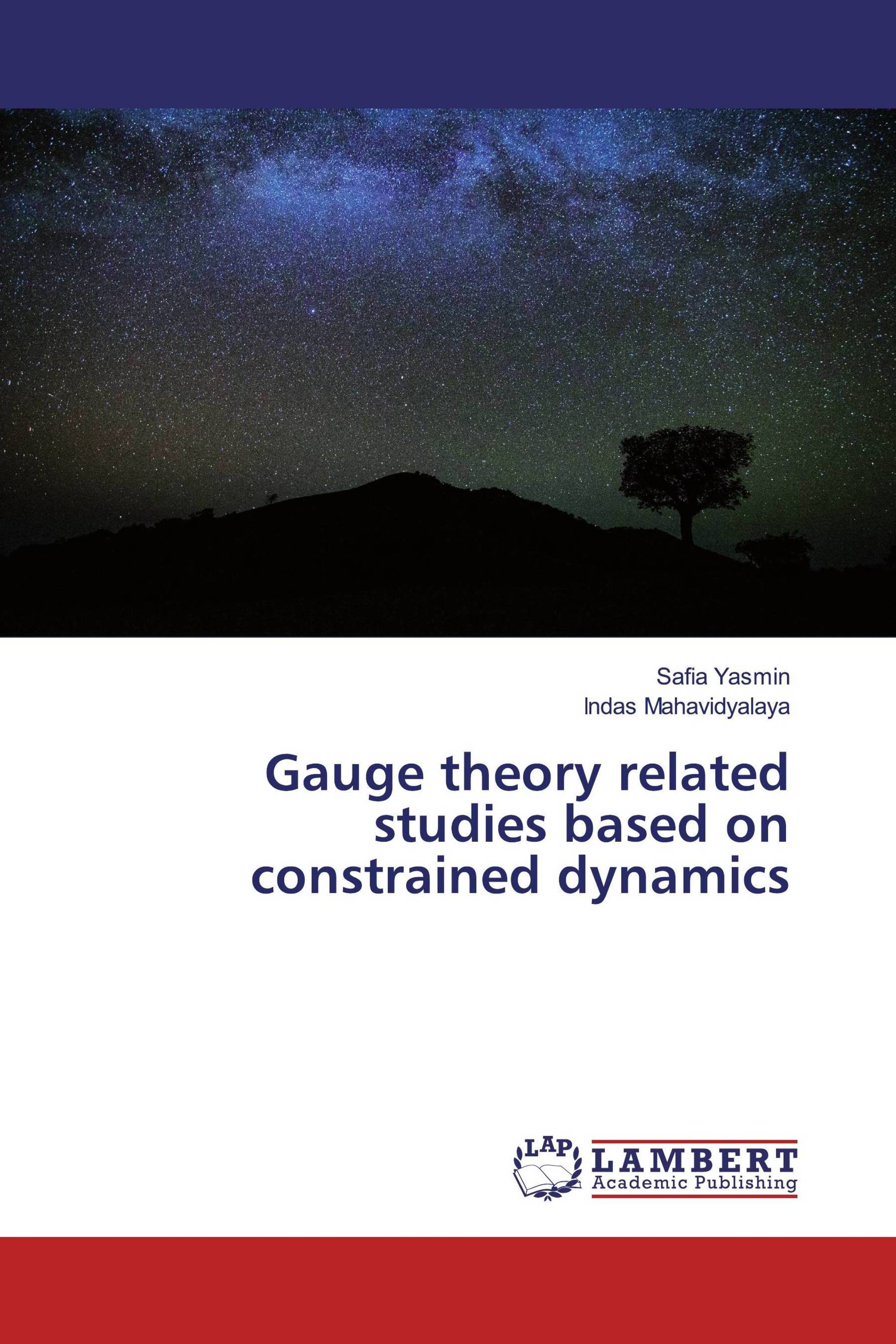 Gauge theory related studies based on constrained dynamics
