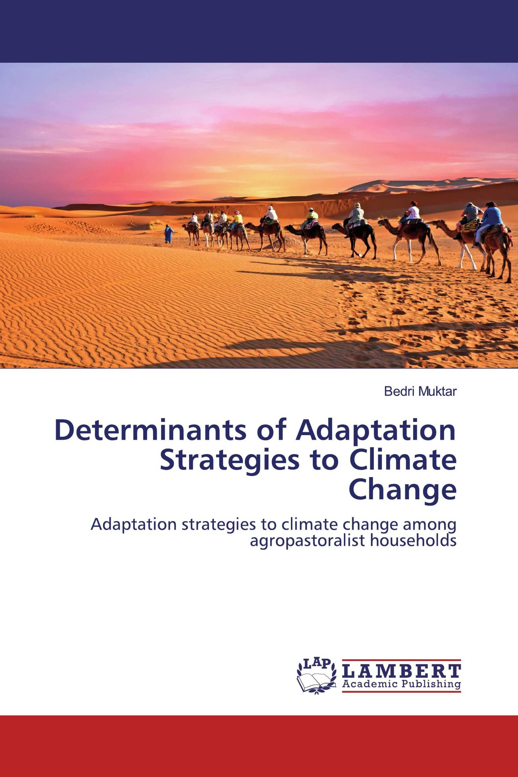 Determinants of Adaptation Strategies to Climate Change