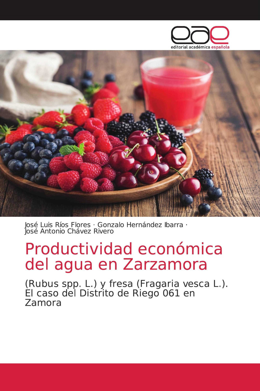 Productividad económica del agua en Zarzamora